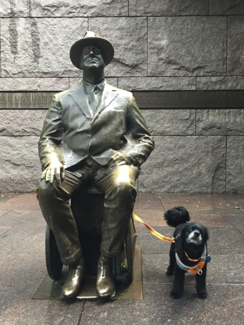 Dog Friendly Tour at FDR Memorial