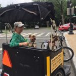 Dogs just love pedicab tours in Washington DC.  People, too.