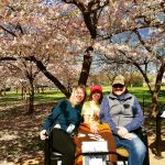 Wonderful tour around the Tidal Basin amidst the Cherry Blossoms today.