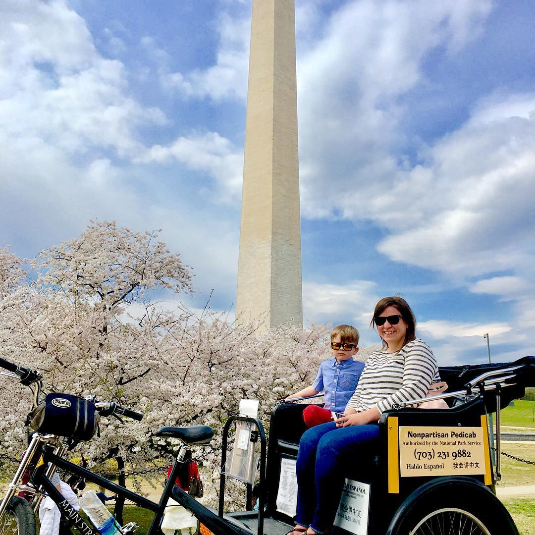 National Cherry Blossom Festival 2020